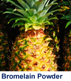 bromelain_powder